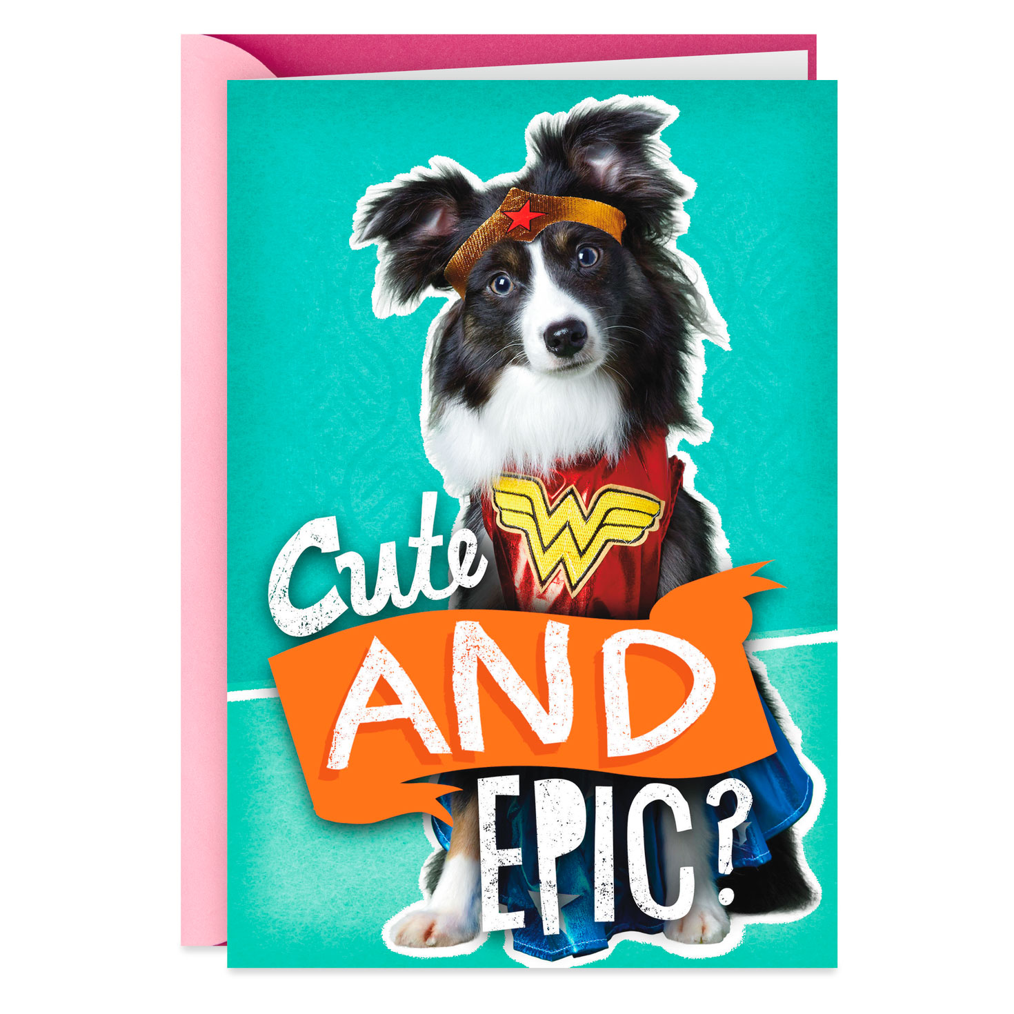 cute and epic dog funny birthday card  greeting cards