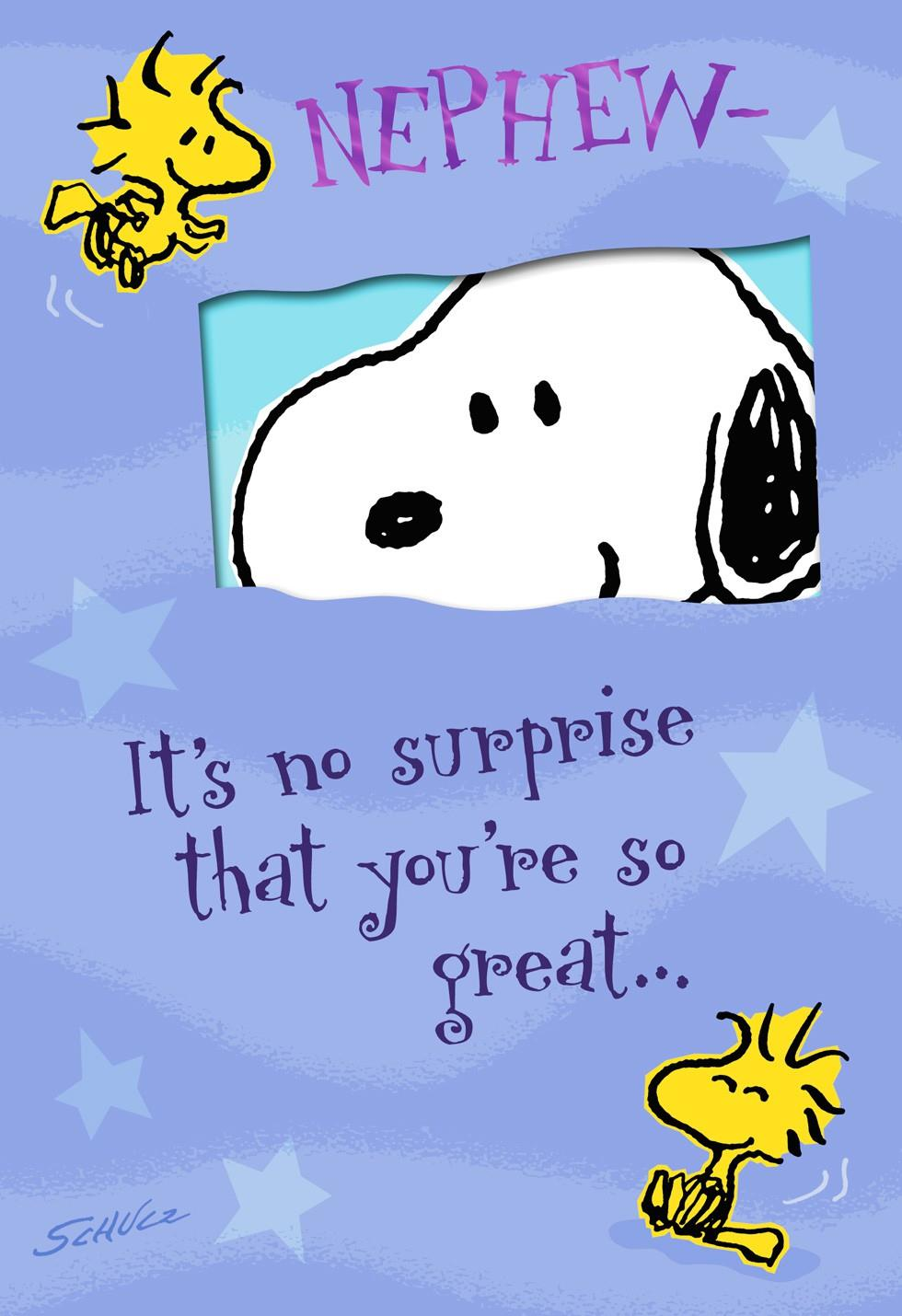 Peanuts Youre So Great Birthday Card for Nephew Greeting Cards – Birthday Card Nephew