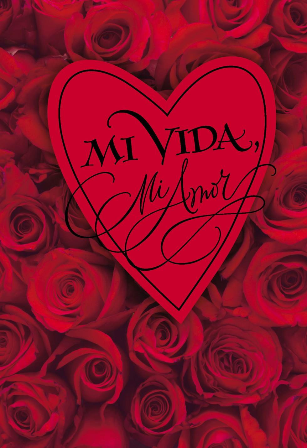 My life my love spanish valentine s day card greeting cards