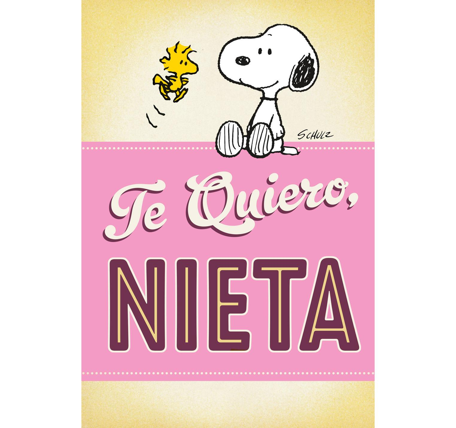 Peanuts Snoopy and Woodstock Spanish Language Pop Up Birthday