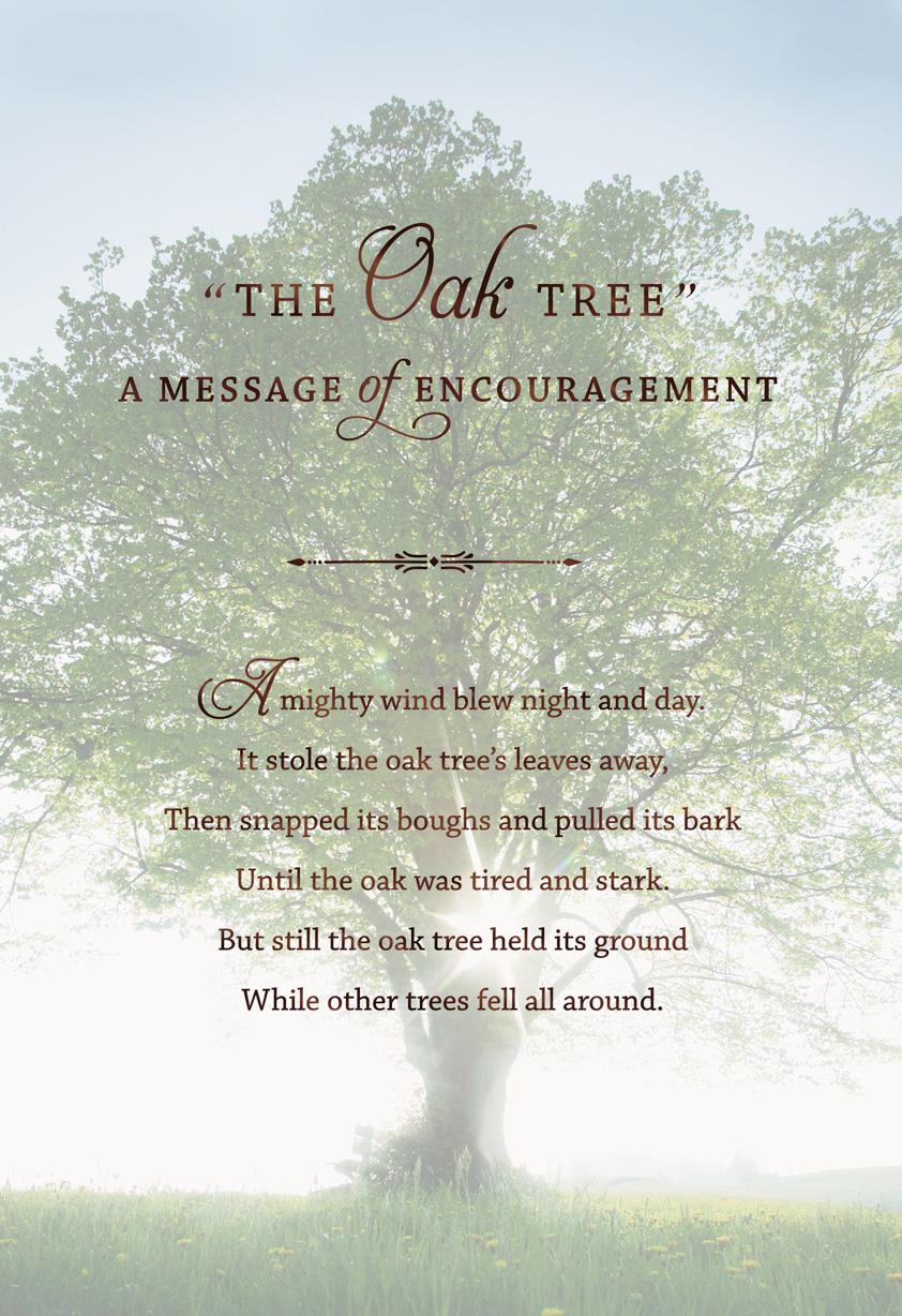 the mighty oak tree encouragement card