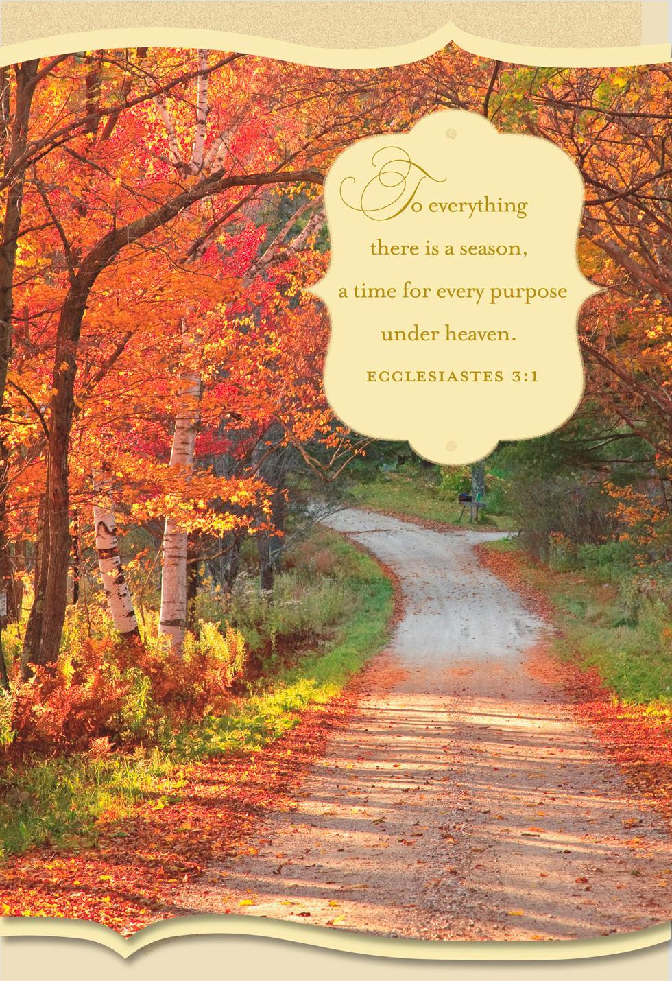 God's Abundant Blessings Religious Thanksgiving Card ...