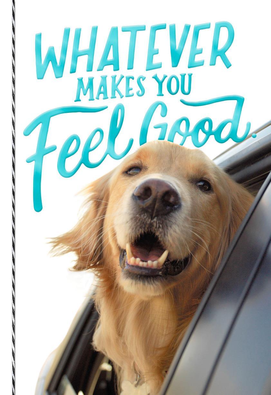 Joyriding Dog Feeling Good Birthday Card Greeting Cards