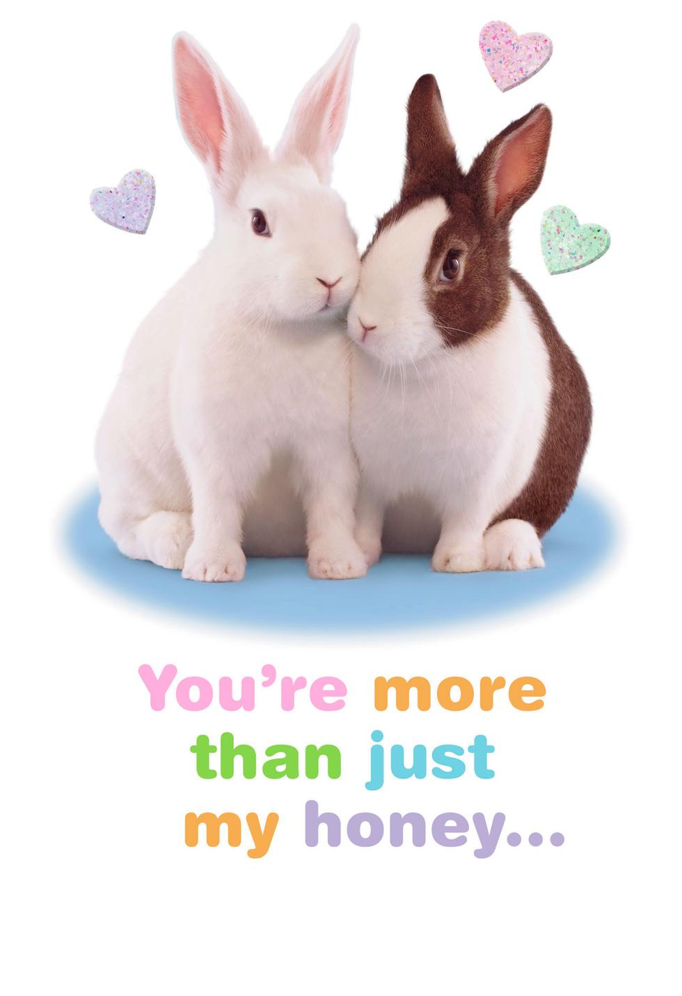 snuggle bunny romantic easter card - end of life