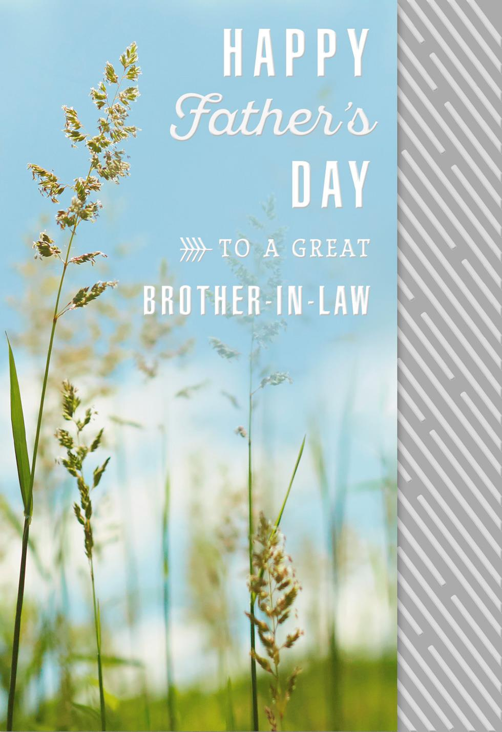 All The Happiness Fathers Day Card For Brother In Law Greeting
