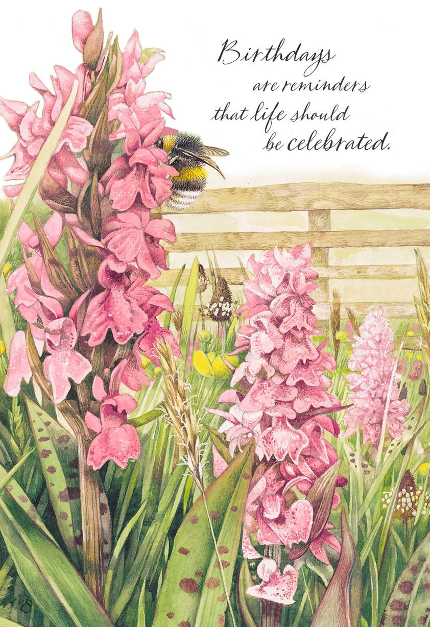 Marjolein Bastin Snapdragon Flowers Birthday Card Greeting Cards
