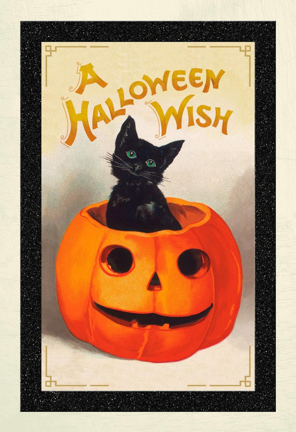 Vintage Black Cat and Jack-O'-Lantern Halloween Card - Greeting ...