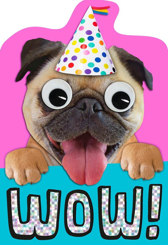 Cute Pug Birthday Card Greeting Cards Hallmark – Pug Birthday Cards