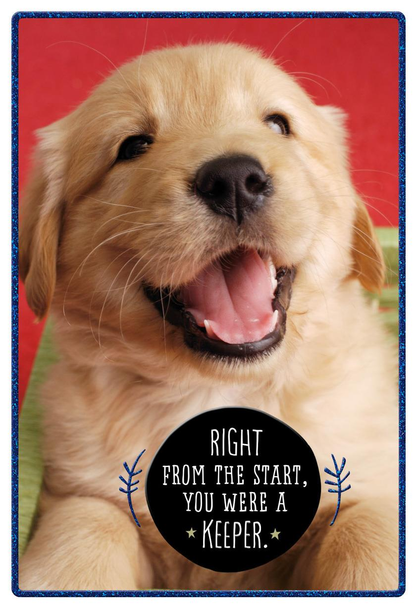 Puppy Love Birthday Card For Son Greeting Cards Hallmark