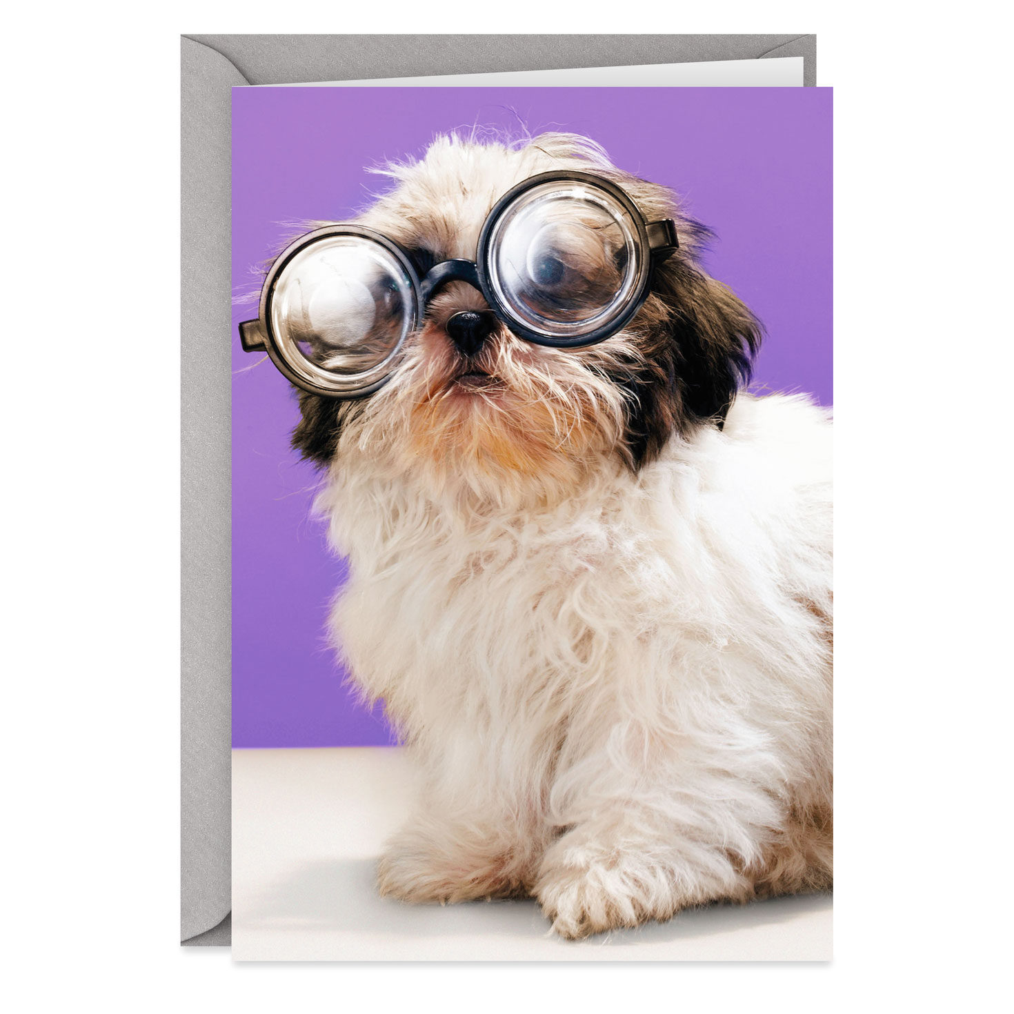 4 greeting cards star bright small dog
