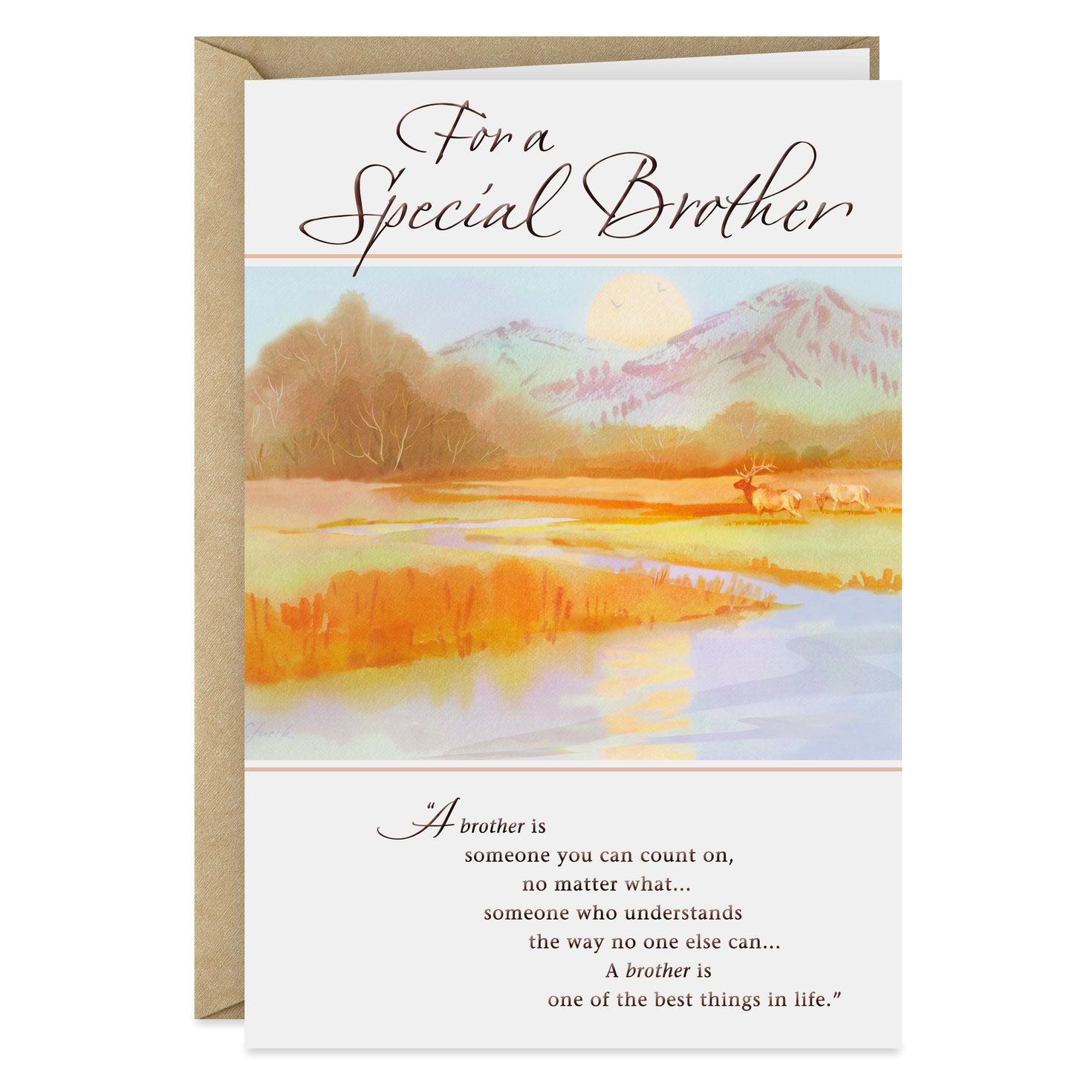 Incredible Special Brother Birthday Card Greeting Cards Hallmark Personalised Birthday Cards Sponlily Jamesorg