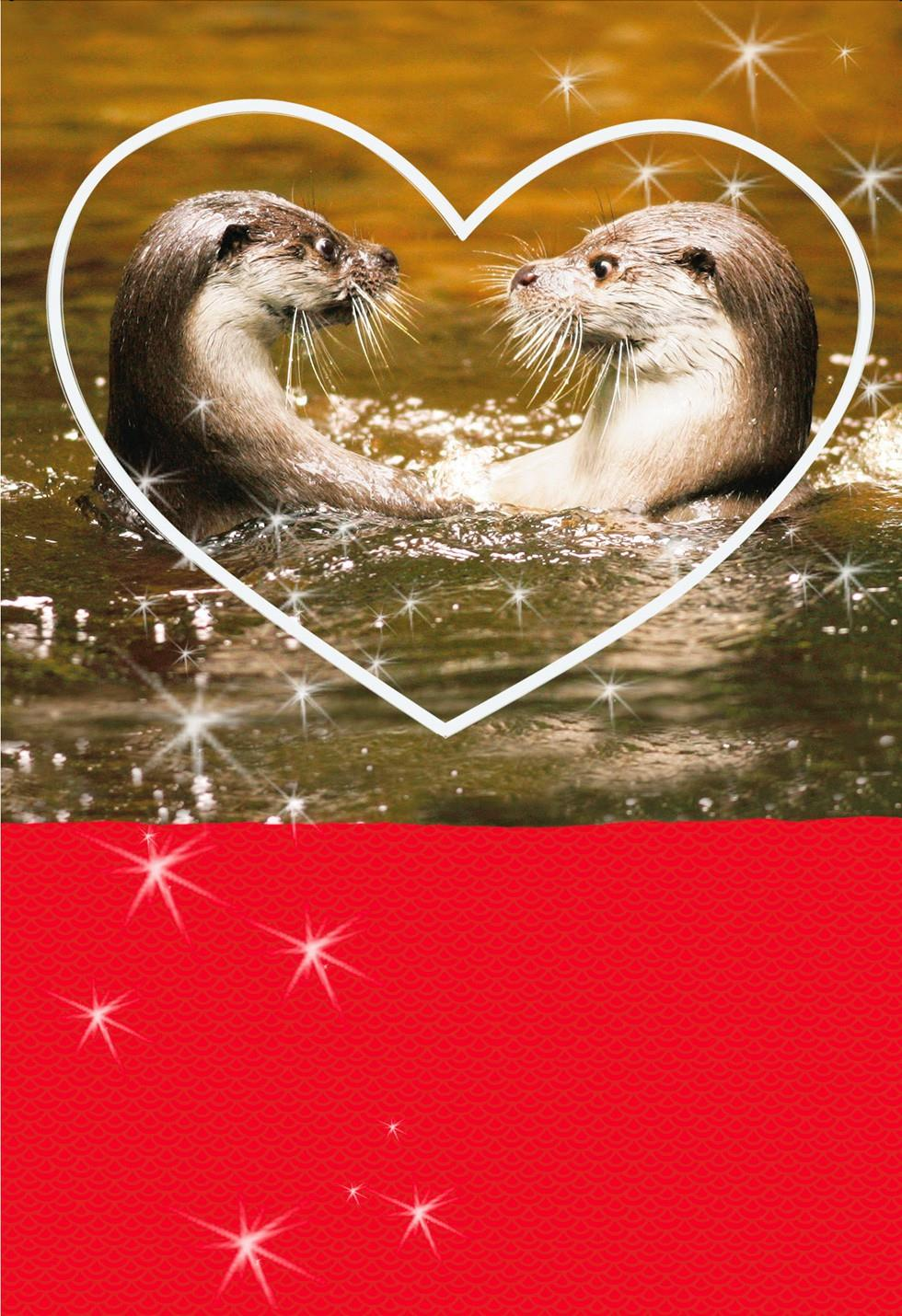 Significant Otter Funny Sweetest Day Card Sweetest Day