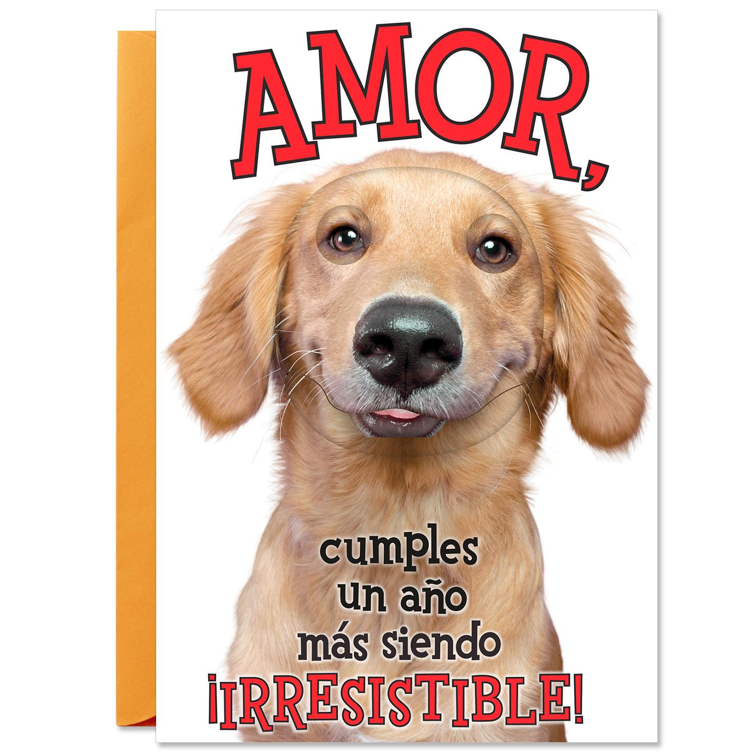 You re Irresistible Spanish Language Romantic Birthday Card