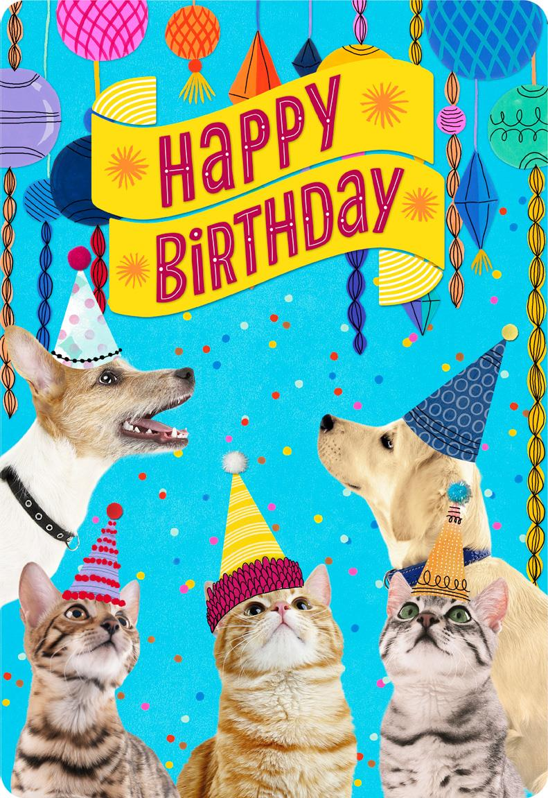 Party Cats And Dogs Jumbo Birthday Card From Us 1625