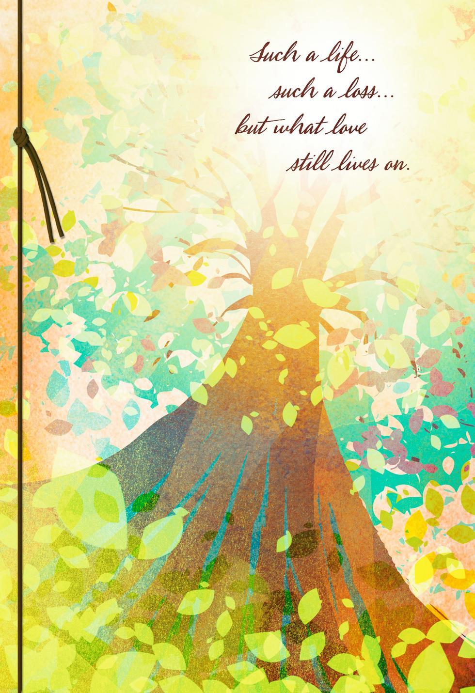 Tree of life jewish greeting cards gifts hallmark peaceful tree sympathy card kristyandbryce Images
