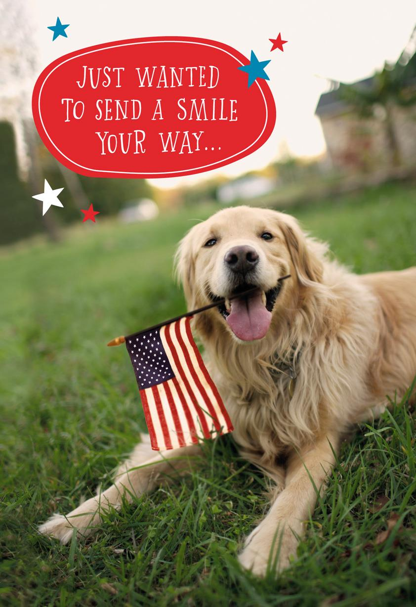 patriotic dog military thinking of you card