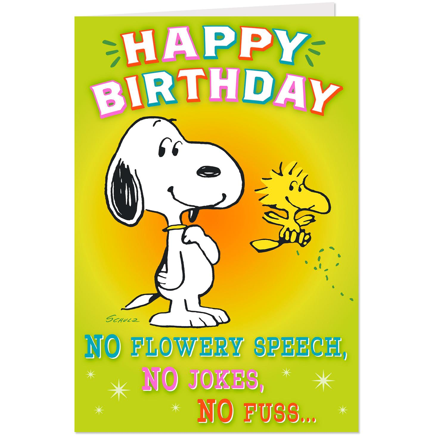 Peanuts® Snoopy And Woodstock Pop Up Birthday Card From