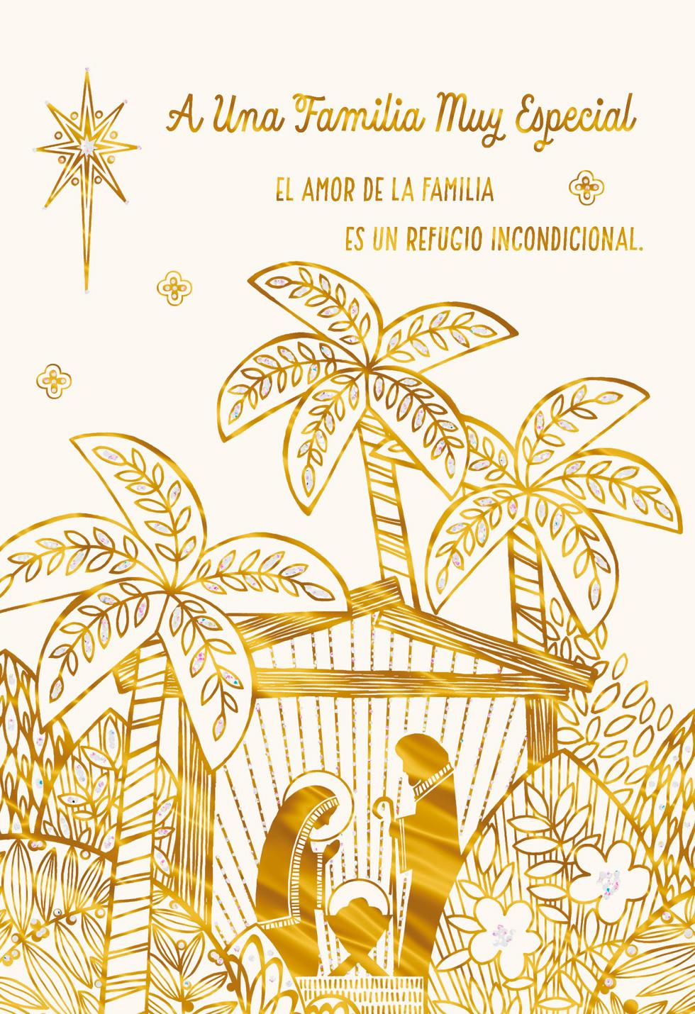 For A Special Family Spanish Language Christmas Card