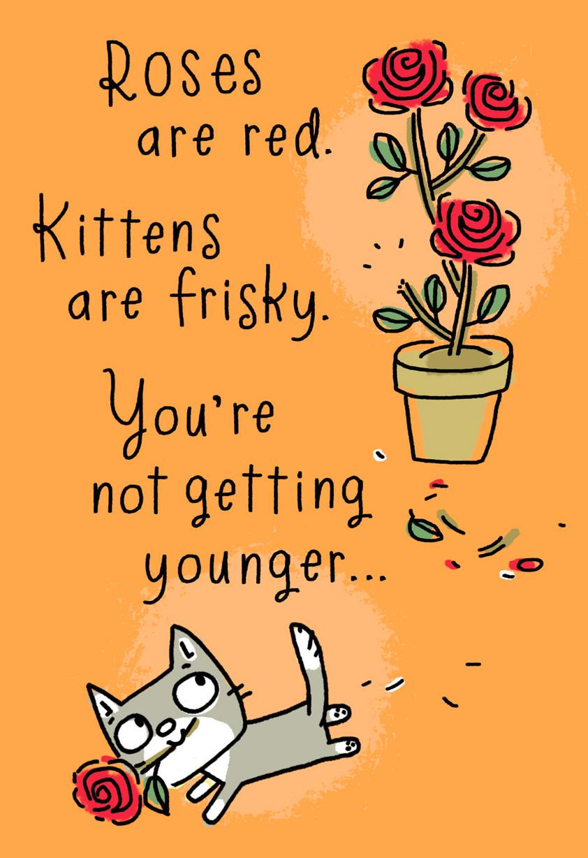 Kittens Are Frisky Poem Funny Birthday Card