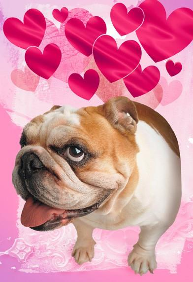 atomic dog lover musical valentines day card - Dog Valentines Day Cards