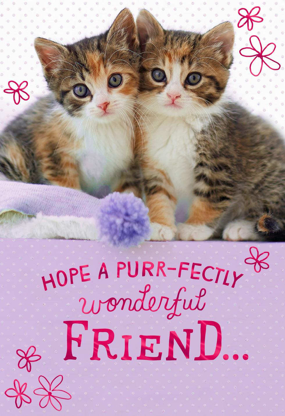 Purr Fectly Wonderful Kittens Birthday Card For Friend