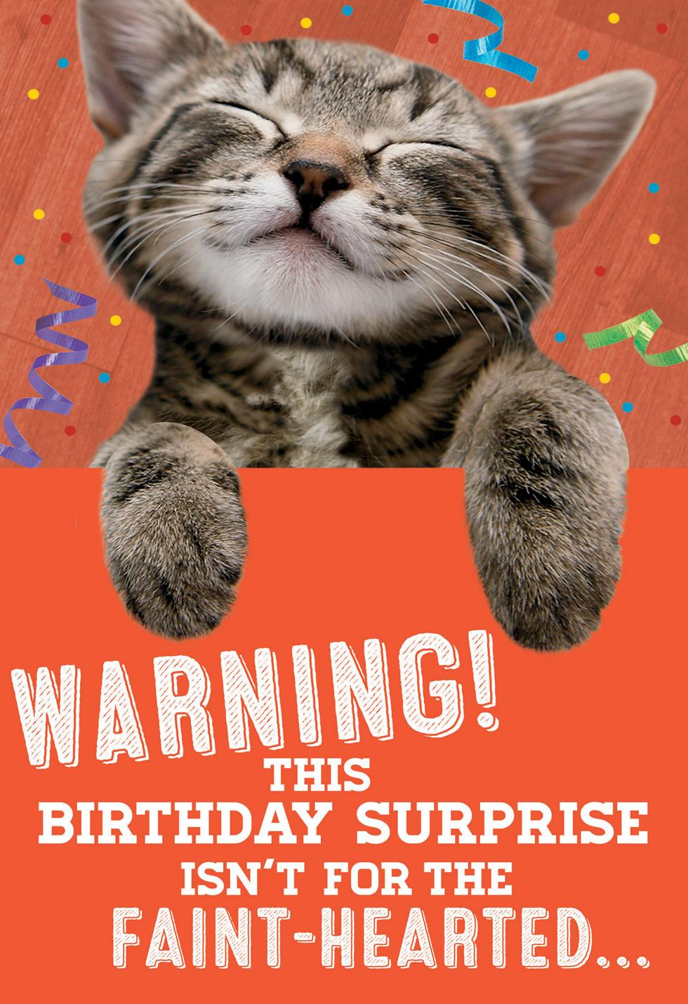 Kitten Surprise Birthday Card With Sound And Motion