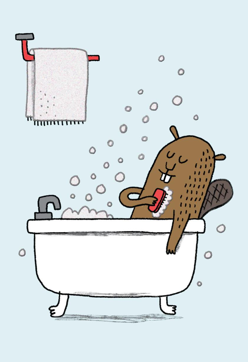 clean beaver funny birthday card - Funny Birthday Card Images