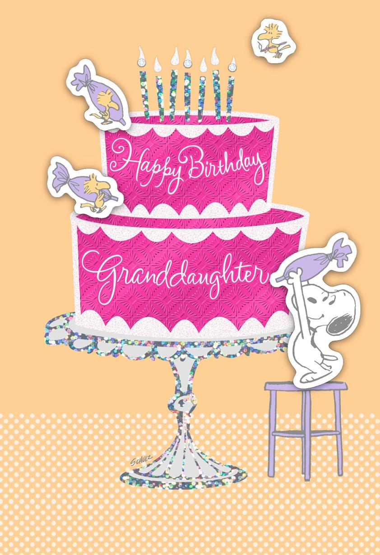 Enjoy the Day Granddaughter Peanuts Birthday Card Greeting – Granddaughter Birthday Cards