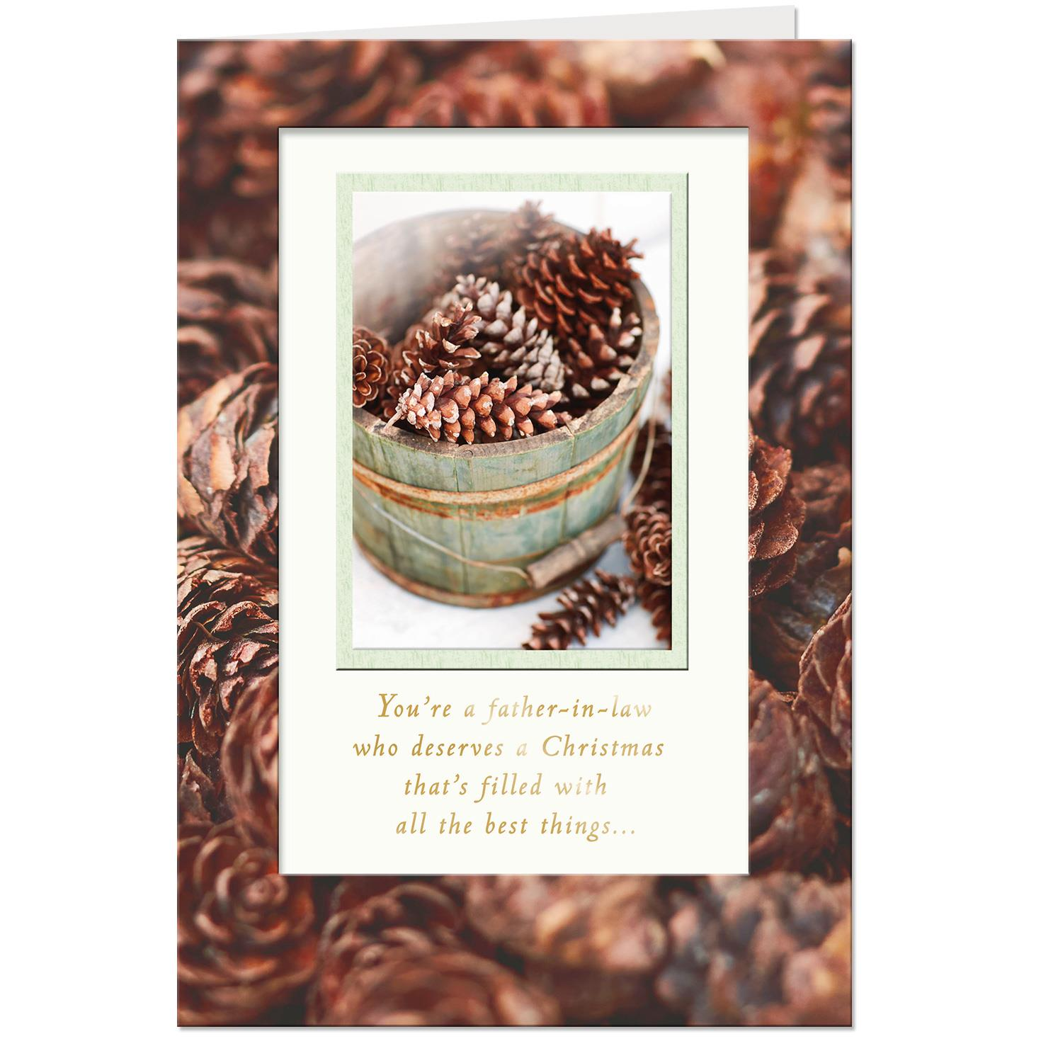 you deserve the best christmas card for father in law - What To Get Father In Law For Christmas