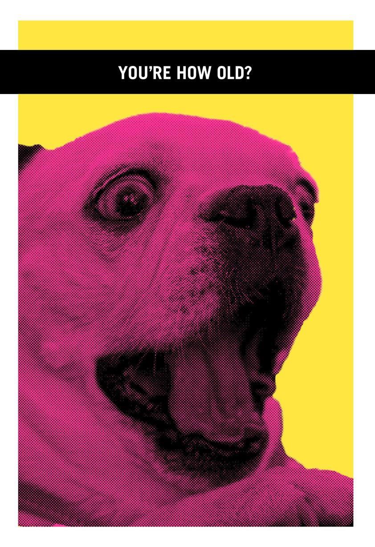 Farting Dog Funny Birthday Card Greeting Cards Hallmark – Farting Birthday Cards