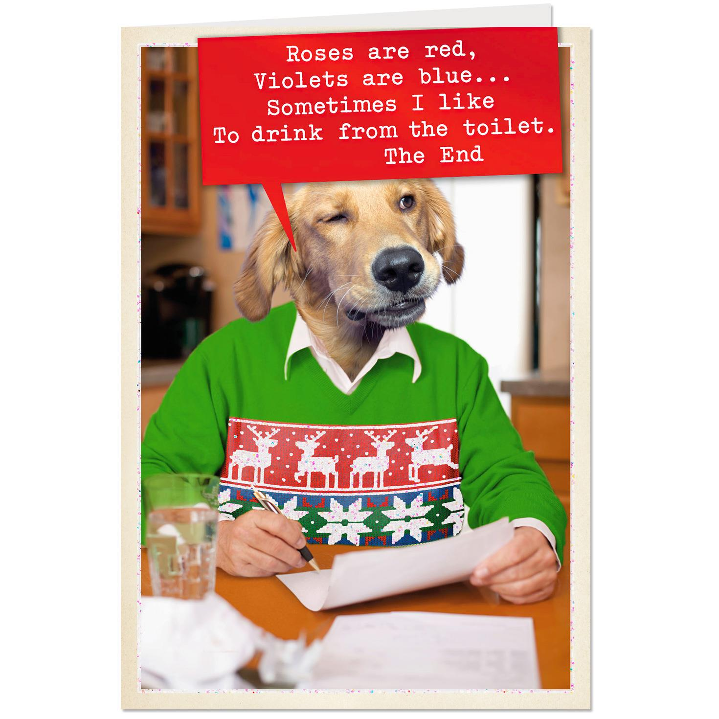 Dog Wearing Holiday Sweater Funny Christmas Card