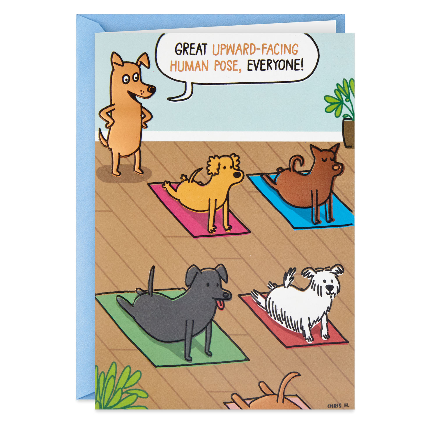 Dogs Doing Yoga Poses Funny Birthday Card