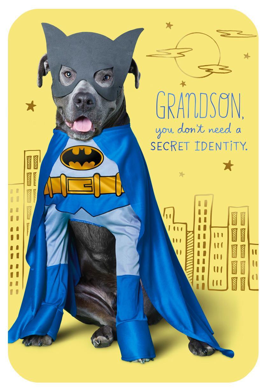 Dc Comics Batman Dog Birthday Card For Grandson