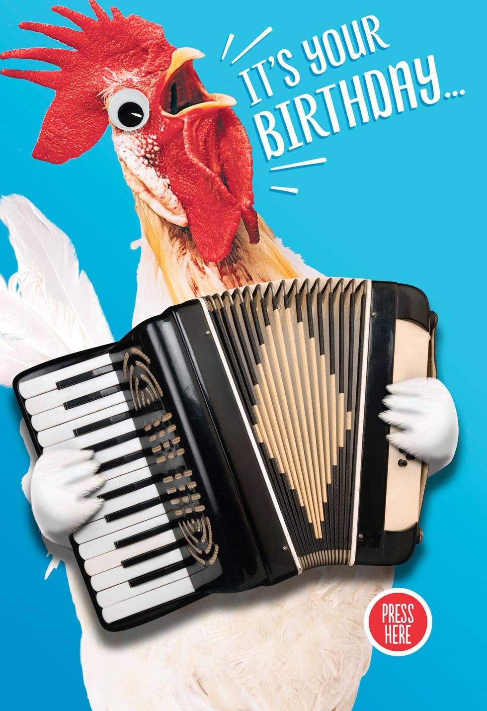 Crazy Chicken Musical Birthday Card With Motion Greeting