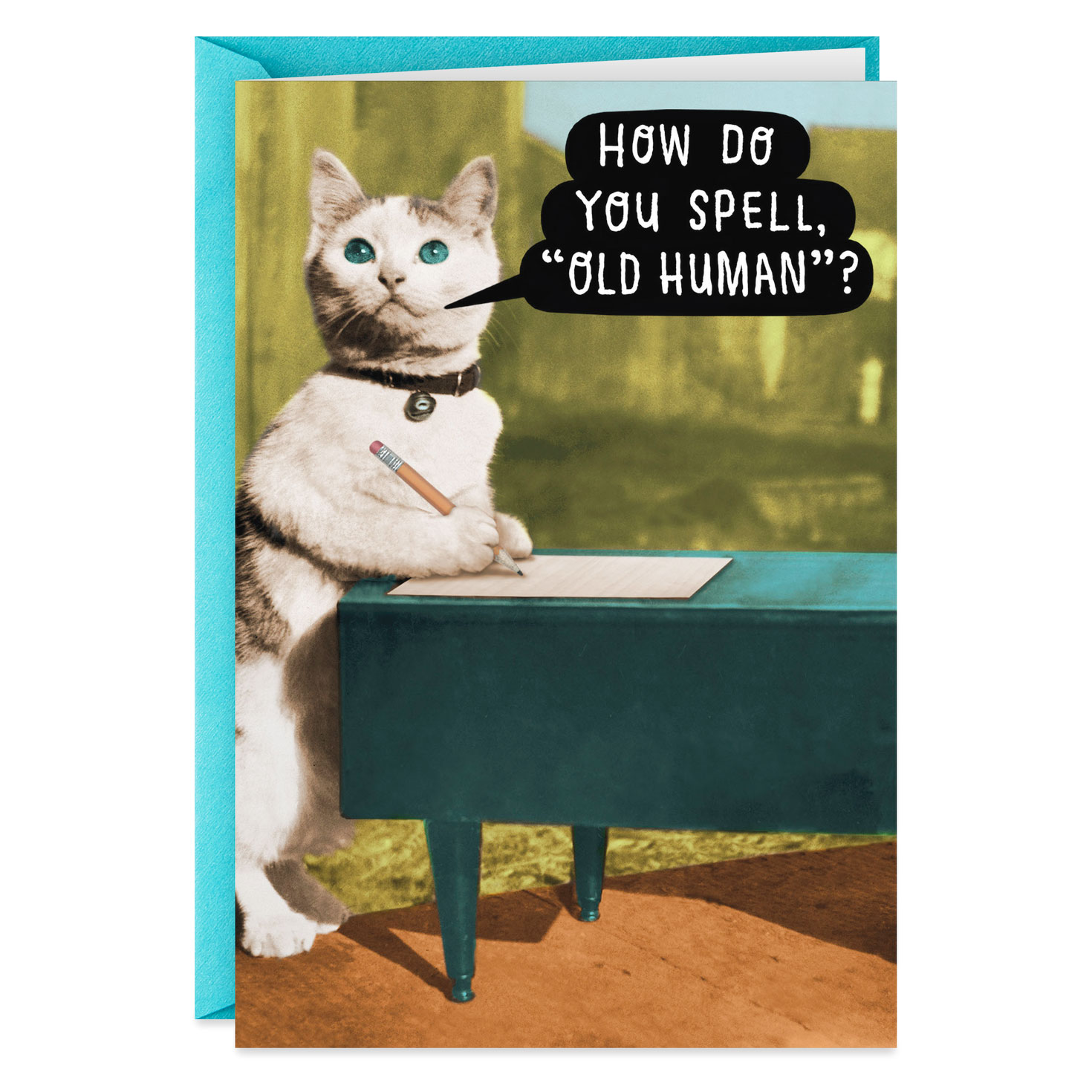 Cat Writing Letter For Old Human Funny Birthday Card