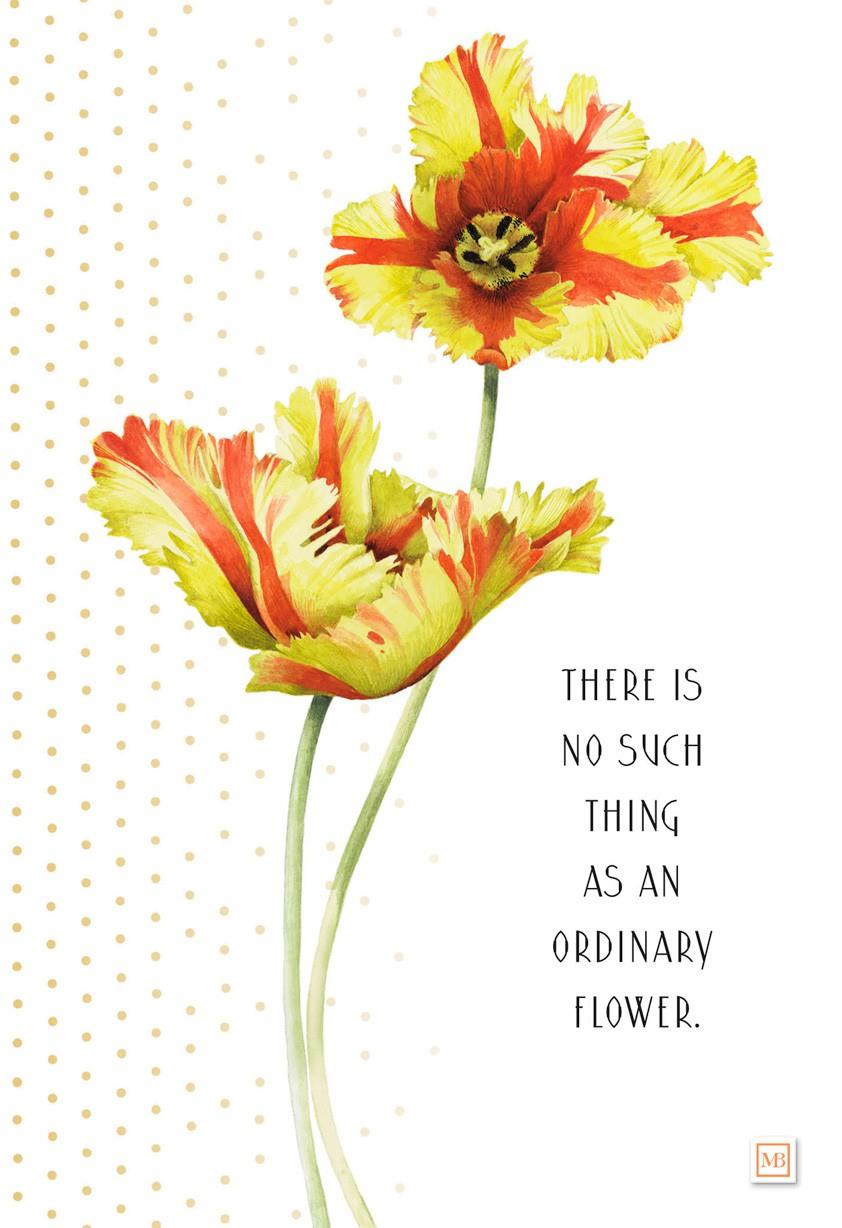You 39 re no ordinary flower marjolein bastin birthday card Hallmark flowers