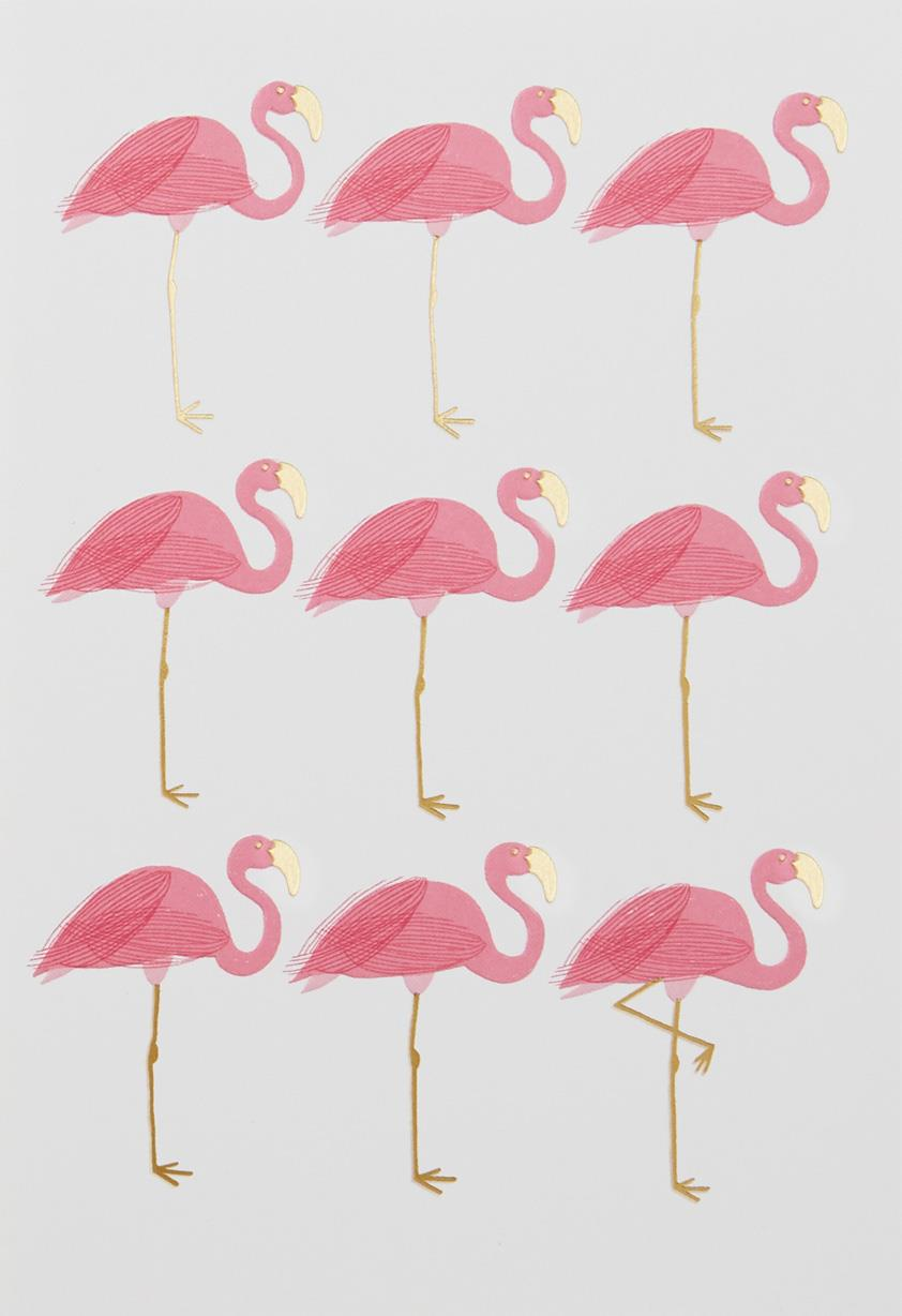 Nine Flamingos Blank Card Greeting Cards Hallmark