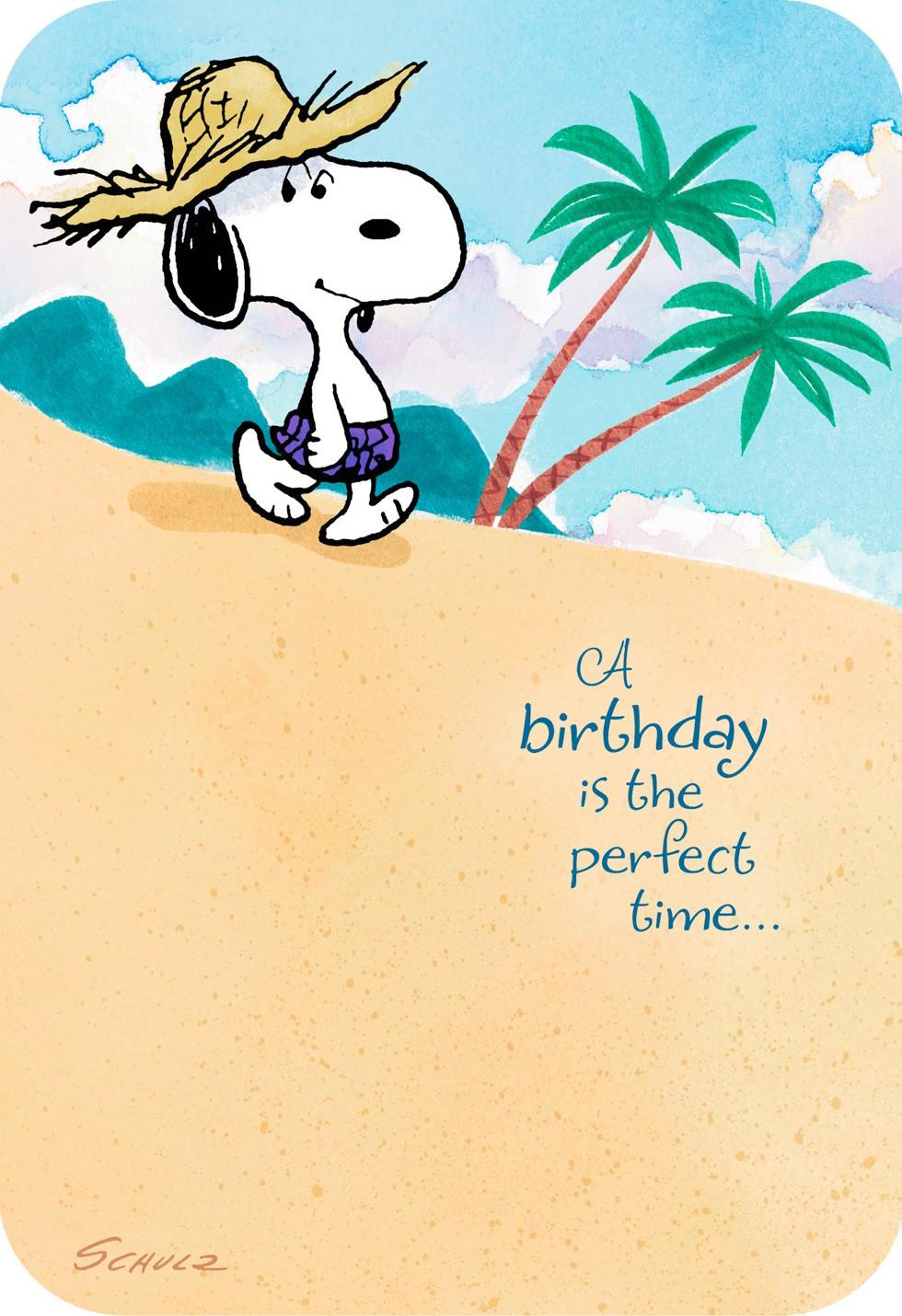 Peanuts® Snoopy Happy Place Musical Birthday Card ...