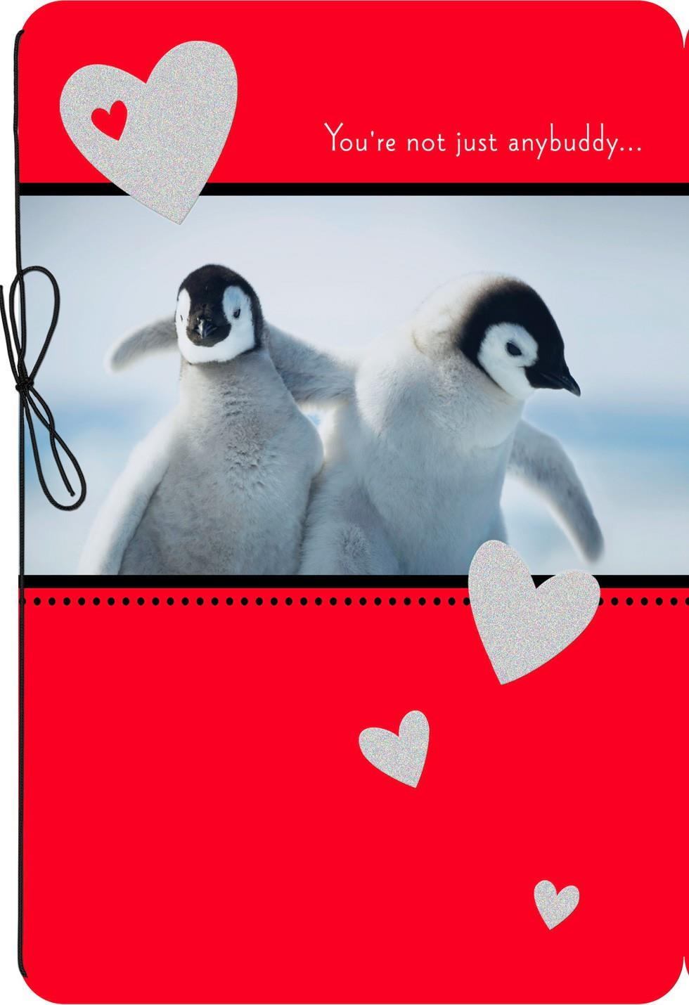 Best Friend Penguins Valentines Day Card Greeting Cards Hallmark – Valentines Day Card for Best Friend
