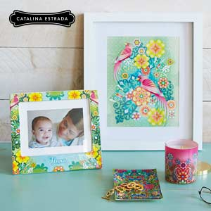 Bright new cards and gifts by Catalina Estrada.